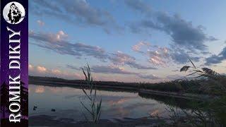 Топарские озера. Открытие сезона на утку. Рыбалка на змееголова.(Сентябрь 2018г)