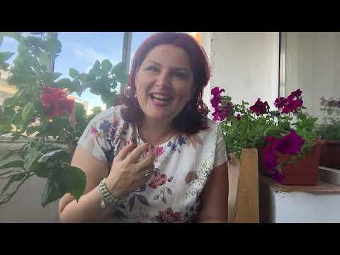 Prin telefon, Jador da cartile pe fata: Ce se petrece intre el si Ramona? from YouTube · Duration:  14 minutes 7 seconds
