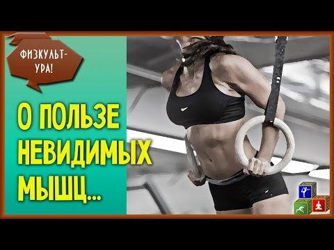⚖ Мышцы кора - что они делают как их укреплять. Тренировка мышц кора