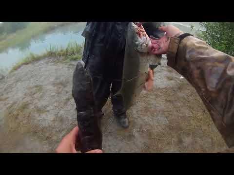 I caught my PERSONAL BEST!! -- Alaska Fishing Trip