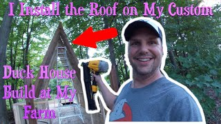 I Install the Roof of My Custom Duck House Build at My Farm