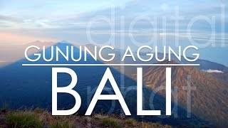 HBI_20322_Black?$prodimage$& Bali 3385