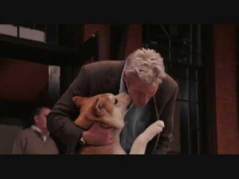 Chú Chó Hachiko-Tình Yêu Vĩnh Cửu Là Có Thật