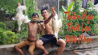 Béo Gầy TV | Ẩm Thực Vịt Lạc , Món Ăn Dân Gian | Cuisine of Peanut Duck, Folk Food