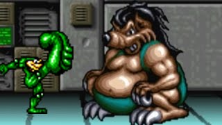 Battletoads & Double Dragon (SNES) All Bosses (No Damage)