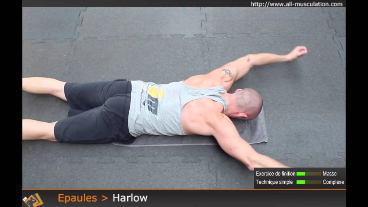 Exercice du Harlow - exercice de musculation des épaules par All-musculation - YouTube