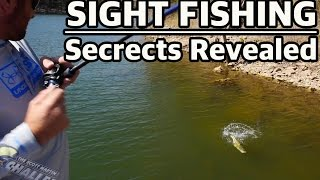 How To Sight Fish For BIG BASS Important Tournament Fishing Tips