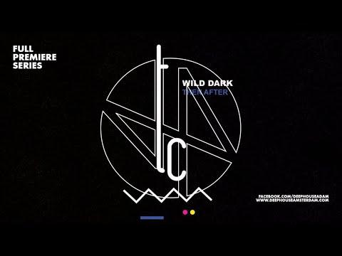 Premiere: Wild Dark – I'll Wait (Original Mix)