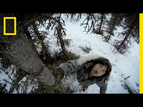 Hunting Porcupine  Life Below Zero
