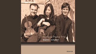 Trio avec piano, Op.100: II. Andante con moto