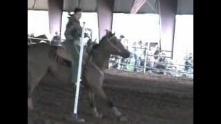 Miranda and Jet competing in poles at 4H