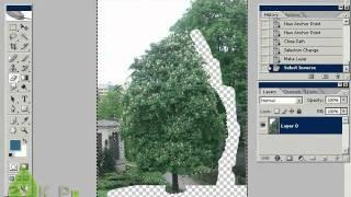 Использование Adobe Photoshop в ландшафтном проектировании