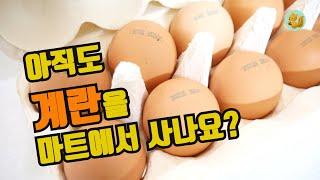 최상급 계란을 마트 대비 50% 더 싸게 사는 방법, …