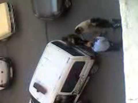 chouha dyal police marrakech
