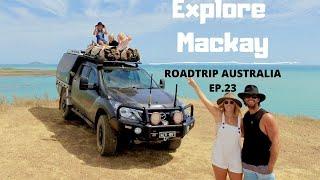 PLATYPUS BEACH & KANGAROOS AT SUNRISE   ROADTRIP AUSTRALIA EP. 23   We explore Mackay in QLD