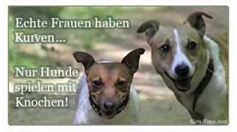 Status lustig bilder whatsapp Lustig Werder
