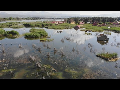 Армения: почему Севан превращается в болото