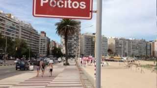Playa de los Pocitos, Montevideo - Explore Uruguay
