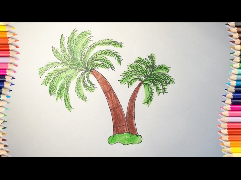 How to draw a coconut tree for kids # Coloring coconut tree for ...