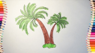 How to draw a coconut tree for kids # Coloring coconut tree for children