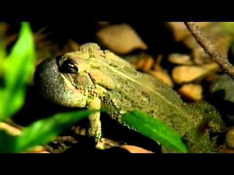 Noxubee National Wildlife Refuge with David