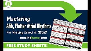 Telemetry Atrial Rhythms AFIB Atrial Flutter Sinus Bradycardia ECG EKG Nursing KAMP NLCEX  2019 Prep