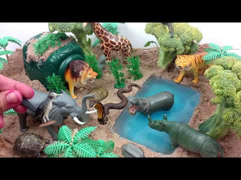 ZOO Wild Animals In Jungle Safari/Learn Names and Sounds of Forest Animals With Scheich Toys