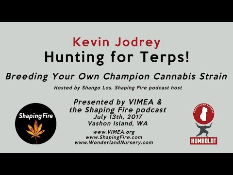 Hunting for Terps! Breeding Your Own Champion Cannabis Strain with Kevin Jodrey