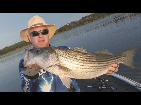 FOX Sports Outdoors SOUTHEAST #21 - 2015 Possum Kingdom Lake Texas Stripers