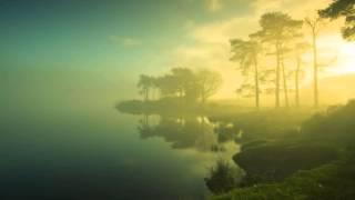 Alucidnation ॐ Fog (In Dub)