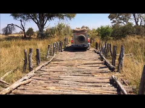 Botswana 2017   Moremi national park