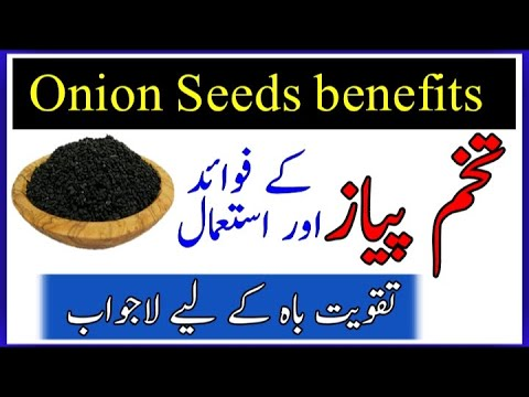 Onion Seeds Benefits || Tukhme Peyaz k Faidy || تخم پیاز کے فوائد