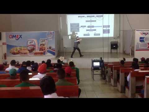 Platica Motivacional Y Trabajo En Equipo Agustin Monroy