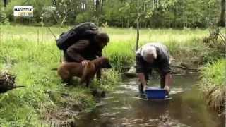 Youtube Kacke - Andreas Kieling - Auf der Fährte der Bache