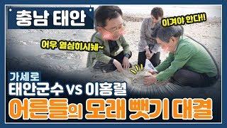 이홍렬VS태안군수! 해수욕장 인싸 게임 모래뺏기 싸움!…
