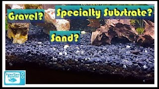 Which Substrate is Right for Your Aquarium??