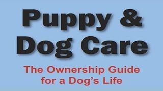 Puppy & Dog Care - An Essential Training & Care Guide For Dog Owners