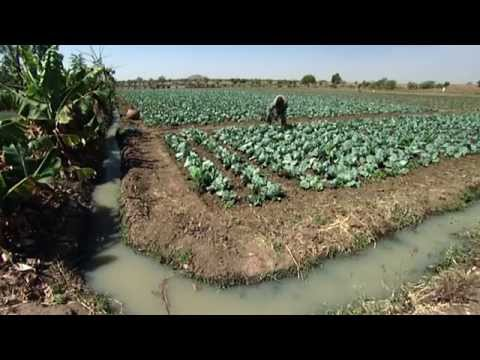 Climate Change - Worldwide Christian Aid Projects