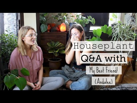 Houseplant Q&A With My BFF! | Let's Hang Out & Talk Plants!