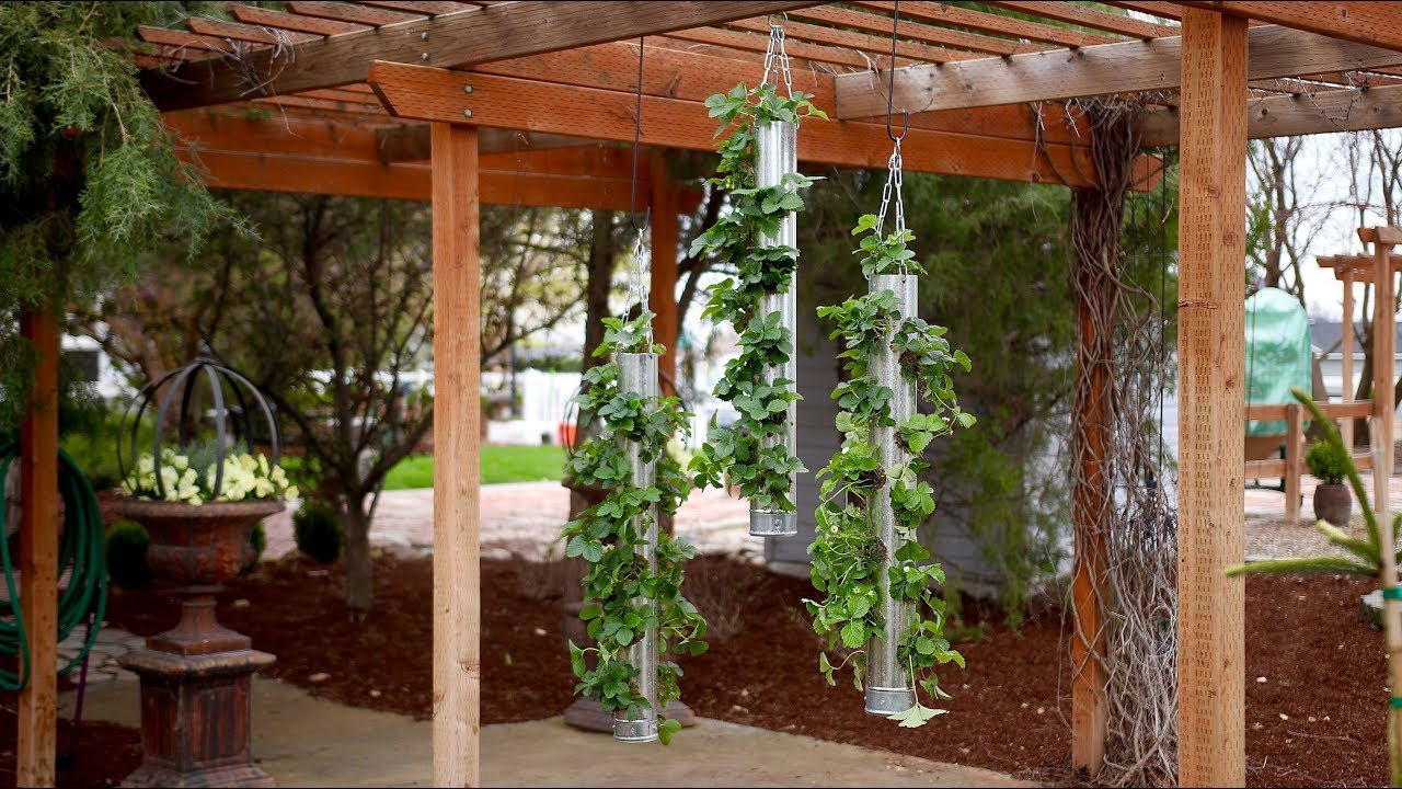 Galvanized Vertical Strawberry Planter! 🍓🍓🍓// Garden Answer - YouTube