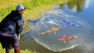 using-giant-net-trap-to-capture-colorful-fish-for-feeding