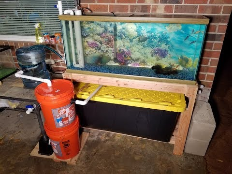 Improved DIY Backyard Aquaponic System