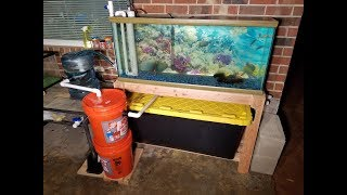 Improved DIY Backyard Aquaponic System