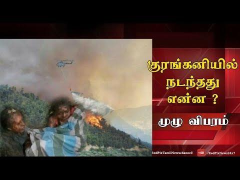 Kurangani fire update Tamil Nadu forest fire update news tamil, tamil live news, tamil news redpix