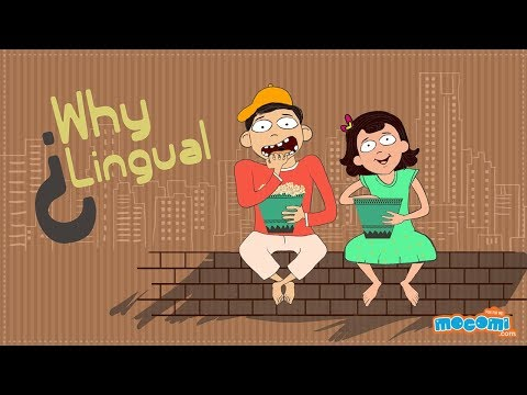 What are homonyms? - Learn English for Kids | Mocomi