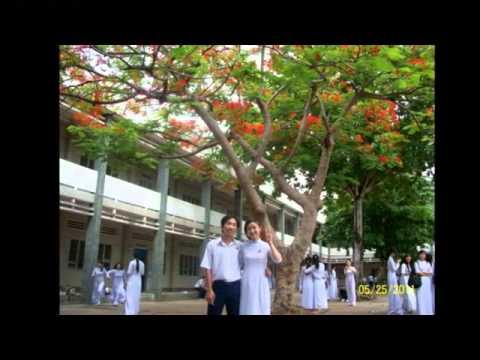 12/10 Nguyễn Đình Chiểu - Bến tre 2011