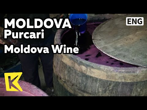 【K】Moldova Travel-Purcari[몰도바 여행-푸카리]몰도바의 와인 사랑/Wine/Grape/Winery