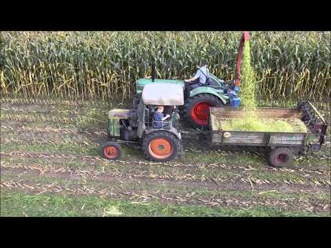 """"""" Die Treckerfreunde Barver """" beim Maishäckseln mit alten Landmaschinen."""