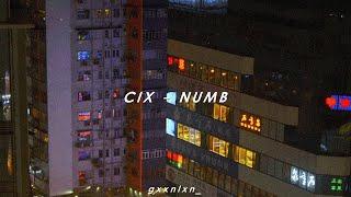 [INDO SUB] CIX - NUMB