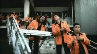 Banda Pequeños Musical - Reencuentro